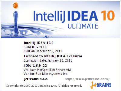 intellij server licence