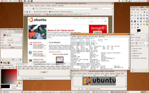 Ubuntu 8.04, Pavel Lisa