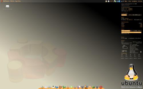 Ubuntu 8.04, Tomáš KAREL