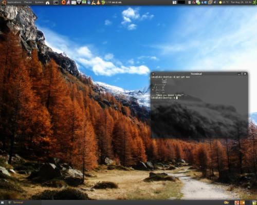Ubuntu, Ladislav Miženko