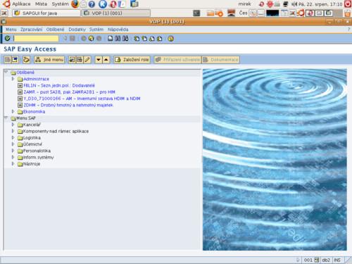 Ubuntu a SAP, Miroslav Saferna