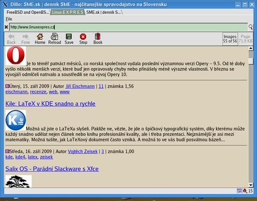 Dillo rovnako ako Firefox či Opera tiež podporuje tzv. karty (tabs)