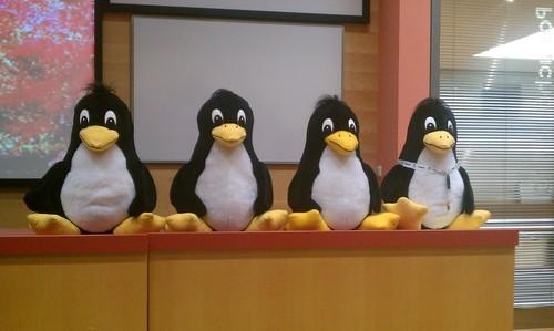LinuxAlt 2010 - Tuxíci
