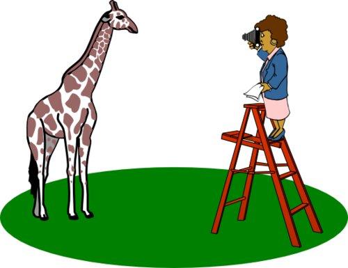 Živý objekt vždy foťte z výšky jeho očí – např. vysoká zvířata ze žebříku nebo z velké dálky s teleobjektivem...