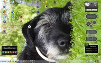 Mandriva Linux 2008.1, Aleš Černý