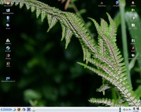Mandriva Linux 2008.1 Free, Libor Polk