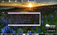 Mandriva Linux 2007.1, Dušan Janiš