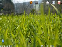 Kubuntu 8.04, Lukáš Helebrandt