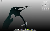 Marian Tománek, KDE 4.3, domáci