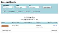 Zoho Invoice - přehled nákladů
