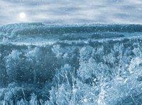 Pošmourný zimní den…