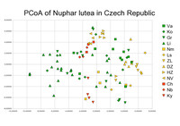 Prostorové znázornění příbuznosti populací