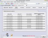 Přiřazení IP adres s konkrétním počítačem (trvalé výpůjčky)